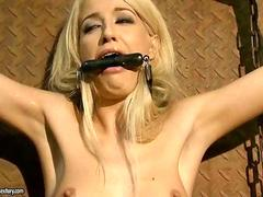 Hot blonde in hard BDSM action